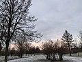 Рассвет в парке.jpg