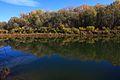 Река Урал осенью - panoramio (3).jpg