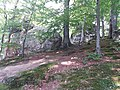 Скельно-печерний комплекс біля с.Бубнище. Поляницький регіональний парк.jpg