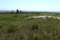 Степной пейзаж в Соль-Илецком районе - panoramio.jpg