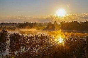 Туманний світанок на болоті.jpg