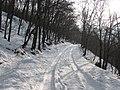 Արզականի և Մեղրաձորի արգելավայր-214.jpg