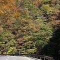 中津峡-紅葉-01 - panoramio.jpg
