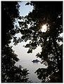 余晖 - panoramio.jpg