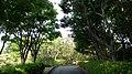 偕楽園 - panoramio (3).jpg
