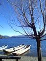 冬日瀘沽4 - panoramio.jpg