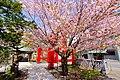 弥彦(伊夜日子)神社(Yahiko Shrine) - panoramio (1).jpg