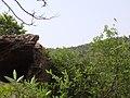怪石 - panoramio (4).jpg