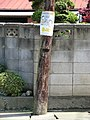 愛のひと声 - panoramio.jpg