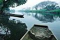 江高镇田园风光Scenery in Guangzhou, China - panoramio.jpg