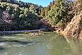 無際橋より開山堂の方向を望む - panoramio.jpg