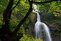 銚子ヶ滝 - Choshi-ga-taki waterfall - panoramio.jpg