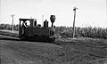 0-4-2 Decauville locomotive 'Frenchy' in Queensland, Australia.jpg