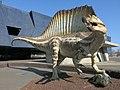035 Spinosaurus davant el Museu Blau, pl. Leonardo da Vinci, Fòrum (Barcelona).jpg
