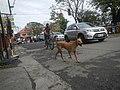 0892Poblacion Baliuag Bulacan 07.jpg