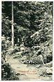 09112-Wernigerode-1907-Partie an der steinernen Rinne-Brück & Sohn Kunstverlag.jpg