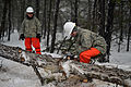 106th Civil Engineering Squadron conducts wildfire and storm debris removal training 150305-Z-SV144-002.jpg
