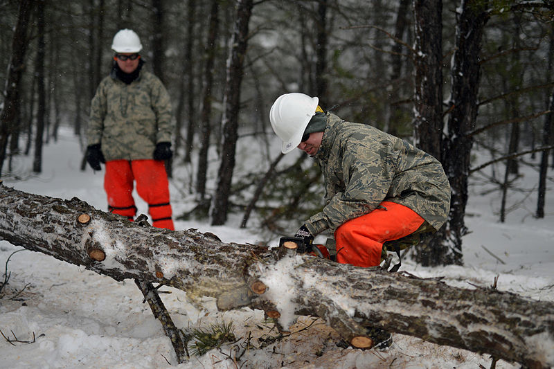 File:106th Civil Engineering Squadron conducts wildfire and storm debris removal training 150305-Z-SV144-002.jpg