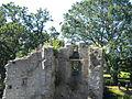 12 08-08 Château de Ranrouët 052.jpg