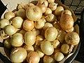 1495Foods fruits of Bulacan 24.jpg