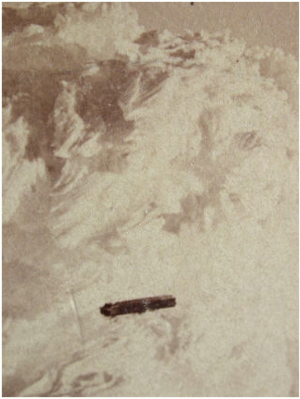Mystery airship - One of the first claimed photographs of a UFO, in reality a cropped image of an elaborate frost formation USA, 1870.