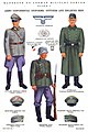 1943 Handbook On German Military Forces Page 066 TM-E 30-451 Army (Wehrmacht ) continental uniforms officers and enlisted men - no known copyright.jpg