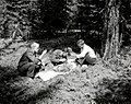 1958. Field crew collecting budworm larvae. Jon Hessle, Doc Hughes, Ned Kuenzi. Blue Mt. Summit, Oregon. (32332909424).jpg