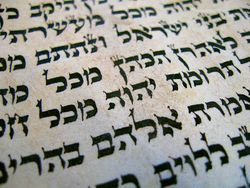 Image illustrative de l'article Tehillim (Reich)
