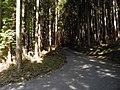 2010-10-18 小南峠 - panoramio (1).jpg
