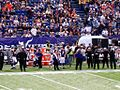 2011 Minnesota Vikings vs Chicago Bears.jpg