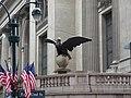 2012 Vanderbilt Eagle.JPG