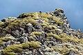 2014-09-16 14-52-33 Iceland Suðurland Skogar Landmannalaugar.jpg