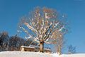 2015-01-01 14-25-25 968.4 Switzerland Kanton St. Gallen Unterwasser Unterwasser.jpg