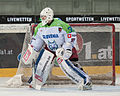 20150207 1434 Ice Hockey ITA SLO 8717 crop.jpg