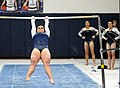 2015 District Championships West Geauga 12.jpg