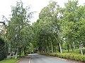 2019-08-23 Universitetet i Oslo 094.jpg