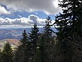 2019-10-27 12 05 58 View south-southeast through Red Spruce forest from the Whispering Spruce Trail just southeast of Spruce Knob in Pendleton County, West Virginia.jpg