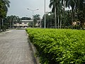 22Mehan Garden Ermita Manila Alexander Pushkin 17.jpg