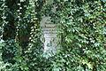 2323viki Cmentarz Żydowski na Ślężnej. Barbara Maliszewska.jpg