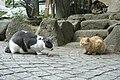 2 Chome-3 Enoshima, Fujisawa-shi, Kanagawa-ken 251-0036, Japan - panoramio (2).jpg