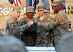 3rd Infantry Division turns 95 in Afghanistan 121121-A-DL064-188.jpg