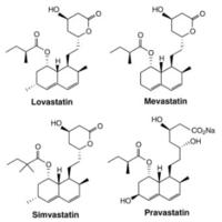 4.statinscompounds.png