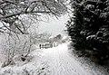 62215 Oye-Plage, France - panoramio (3).jpg