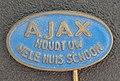 AJAX houd uw hele huis schoon reclamespeldje.JPG