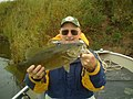 A Big Fat Smallmouth Bass (8435590084).jpg