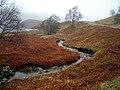 A Burn Running Down to Loch Katrine - geograph.org.uk - 689575.jpg