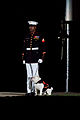 A U.S. Marine Corps corporal escorts the current Marine mascot, English bulldog Sgt. Chesty XIII, at center walk during an Evening Parade at Marine Barracks Washington in Washington, D.C., July 19, 2013 130719-M-MM982-065.jpg