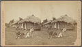 A group of natives, Chipigana, from Robert N. Dennis collection of stereoscopic views.png
