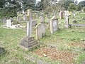 A guided tour of Broadwater ^ Worthing Cemetery (84) - geograph.org.uk - 2344016.jpg