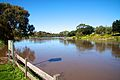 A high Barwon River in Newtown.jpg